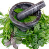 Poznaj zioła i preparaty, które warto stosować przy raku jelita!