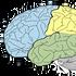 Skuteczność wielu sposobów na podniesienie IQ potwierdzona naukowo